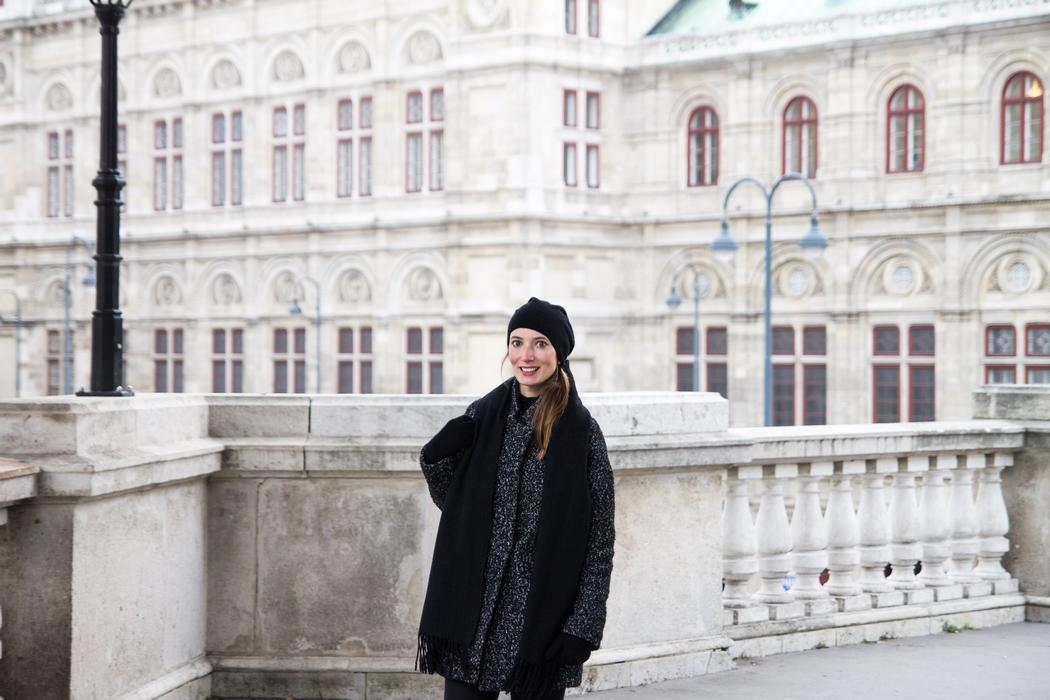 vienne-centre02