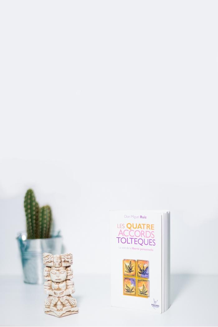 Les quatre accords toltèques de Don Miguel Ruiz fait partie de ces livres qu'on ne peut oublier une fois refermés. Au fil des pages, l'auteur dévoile la clé pour accéder à la liberté et au bonheur. Vous serez sûrement frappé par le simple bon sens sur lequel sont forgées les idées toltèques, des évidences qui sont pourtant complètement occultées dans notre quotidien. Un livre de développement personnel à lire absolument et à mettre dans toutes les mains !