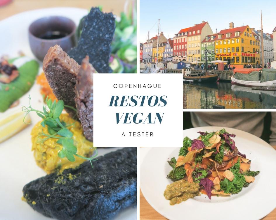 Copenhague est une ville avant-gardiste, c'est donc sans surprise que vous y trouverez de délicieux endroits pour déguster une cuisine végétale de choix. J'ai déniché 4 adresses de restaurants véganes qui valent le détour. Vous m'en direz des nouvelles !