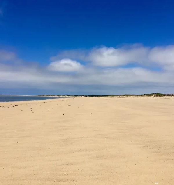 Beach Walk…