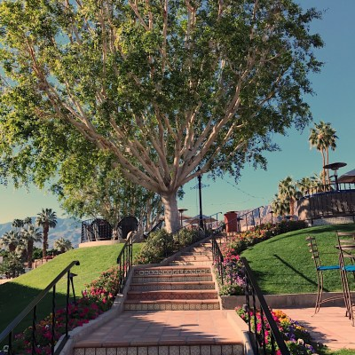 Palm Desert | The Ultimate Place to Wine and Dine