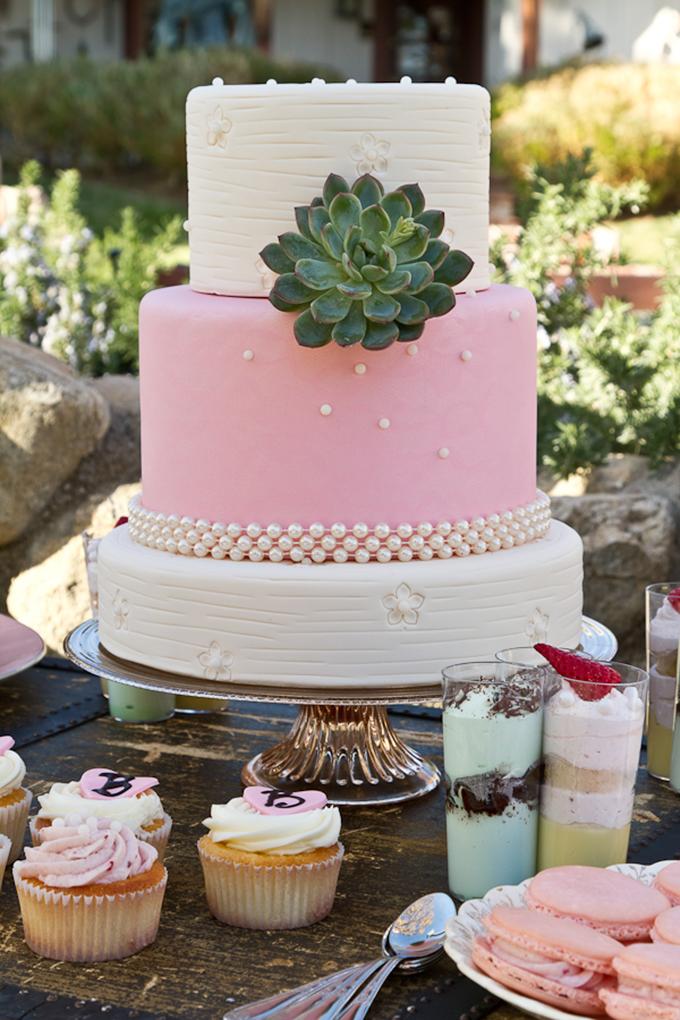 pink & succulent cake   Cardin Creative Photography