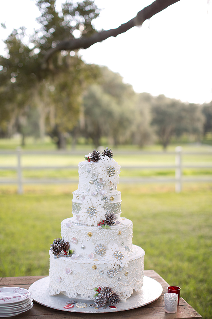 winter vintage glam cake from The Cake Zone | Theresa NeSmith Photography | Glamour & Grace