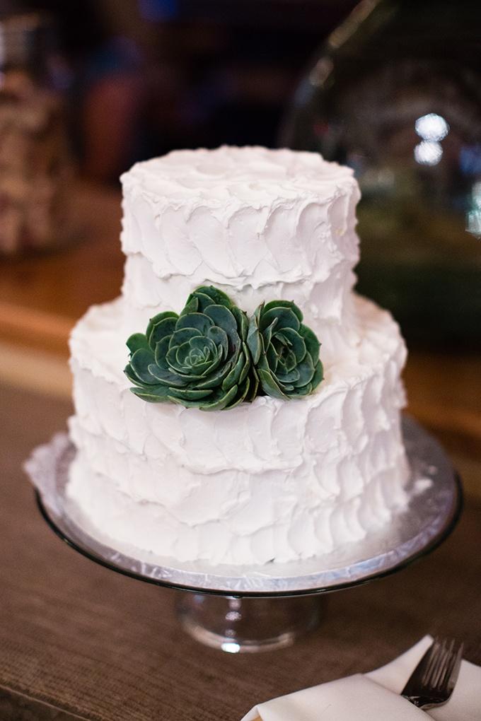 succulent cake by Ettore's   Carmen Salazar   Glamour & Grace