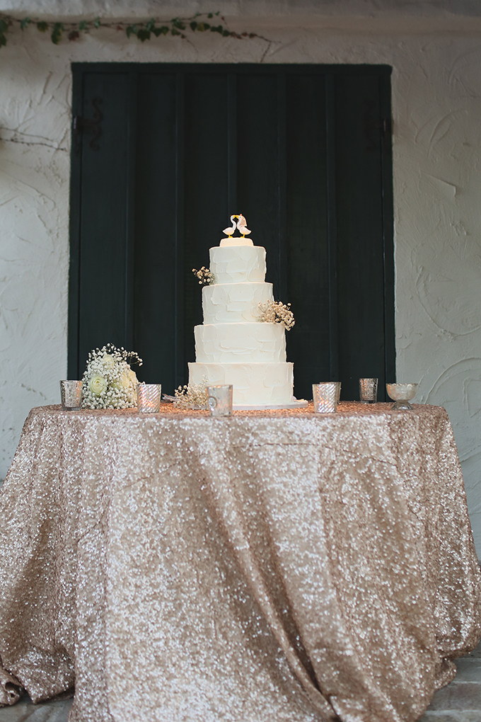 gold sequin and Sweet & Saucy cake | Allie Lindsey Photography | Glamour & Grace