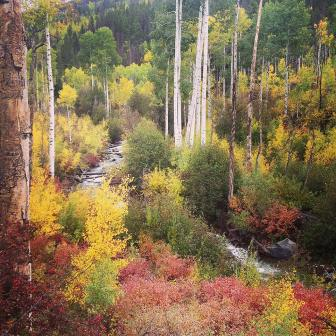 Gorgeous colors. Sylvan Lake SP. Eagle CO.