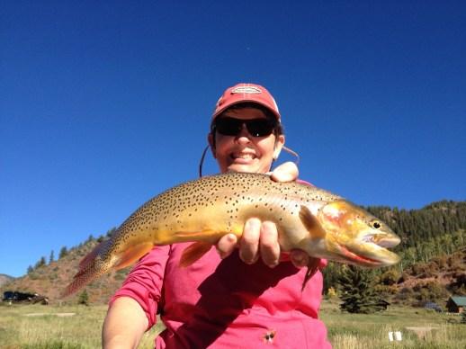 Beautiful brown trout. Sylvan Lake SP, Eagle CO.