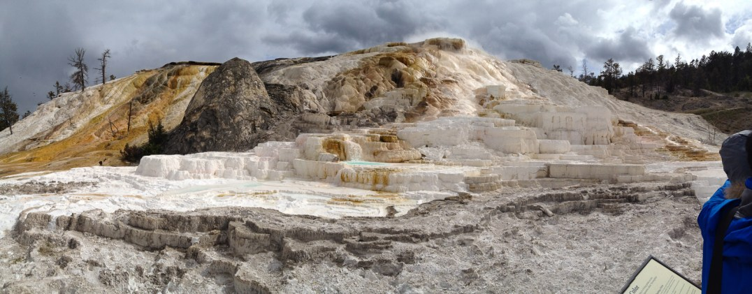 Mammoth Hot Springs, YNP.