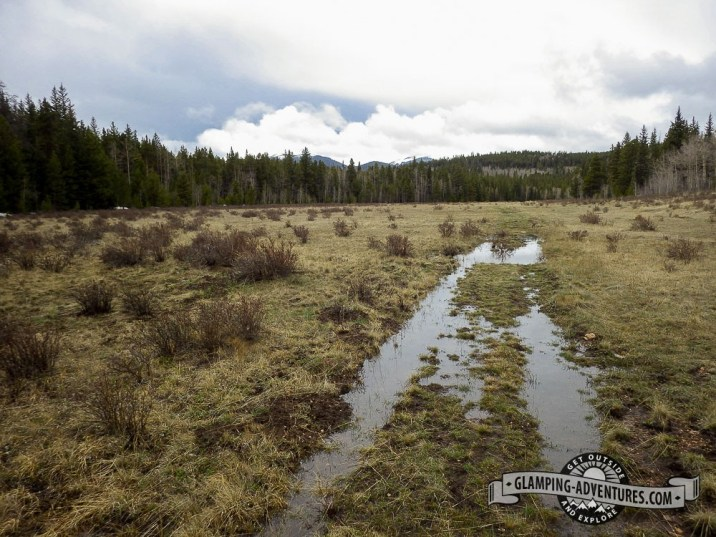 Flooded meadow from all the rain. Our point of return on the Colorado Trail. Kenosha Pass, CO
