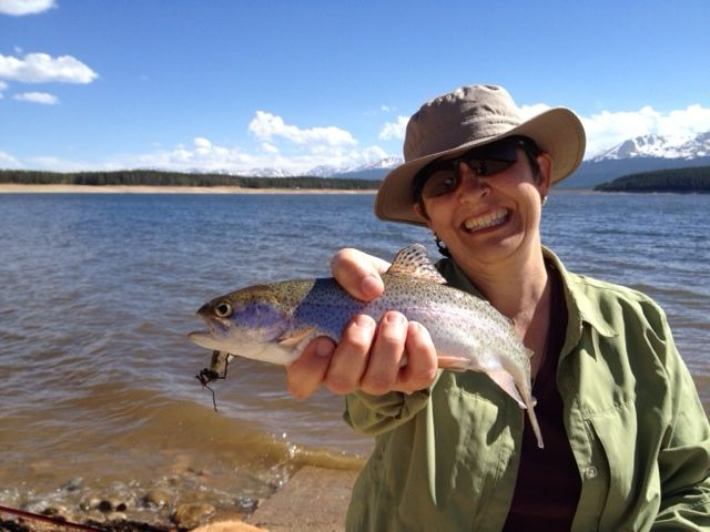 Lovely rainbow trout. Turquoise Lake, Leadville, CO