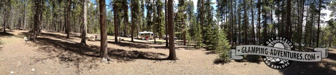 Plenty of area to train with Daisy. Baby Doe CG, Turquoise Lake, Leadville, CO