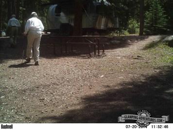 Trailcam picture.