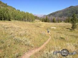 Lovely field along Burn Ridge Trail.