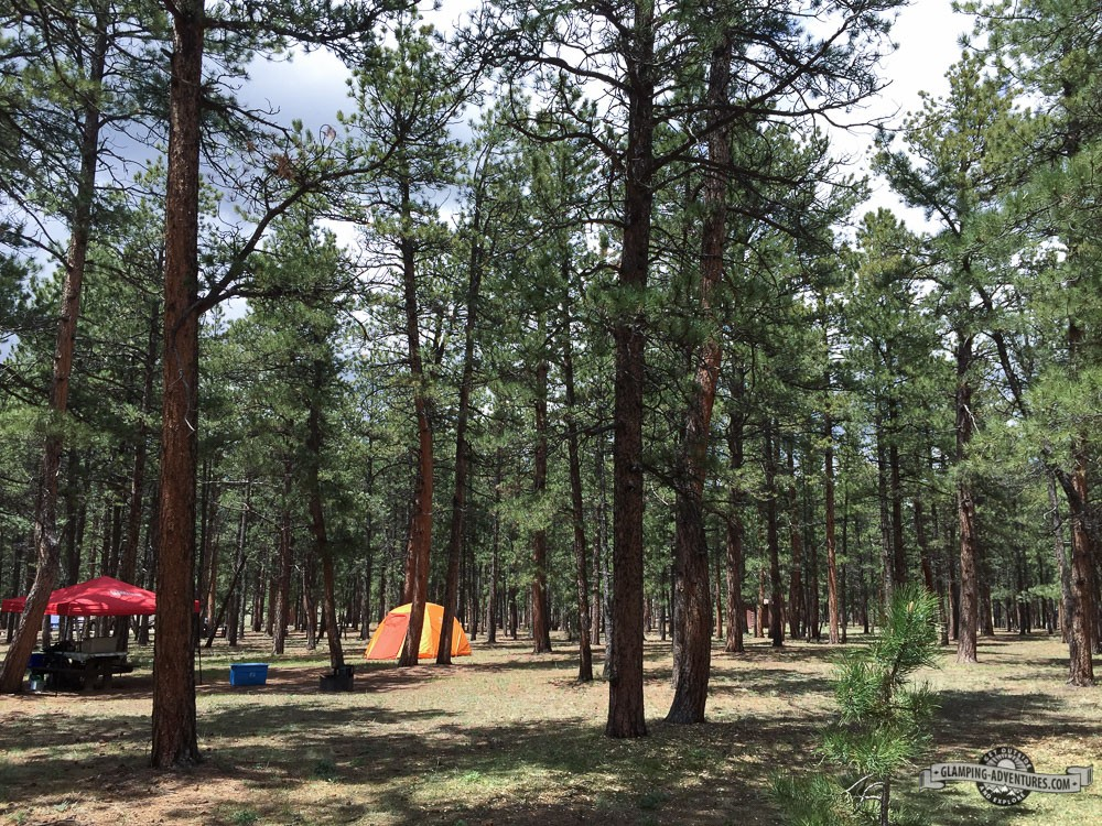 South Meadows Campground.