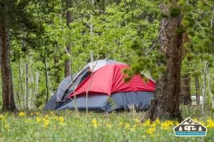 Neighbors tent camping. Kenosha Pass CG, CO.