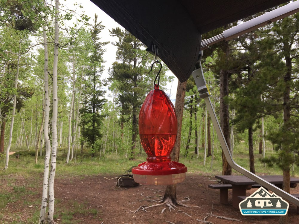 Humming bird feeder at the camp. Kenosha Pass CG, CO.