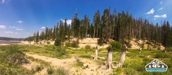 Walking below the campsite. Chambers Lake C.G.