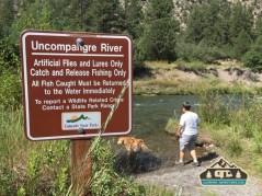 Uncompahgre River near Pa-Co-Chu-Puk Campground. Ridgway S.P.