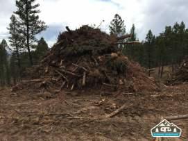 Slash pile from harvesting trees. Westcreek Rd., CO.