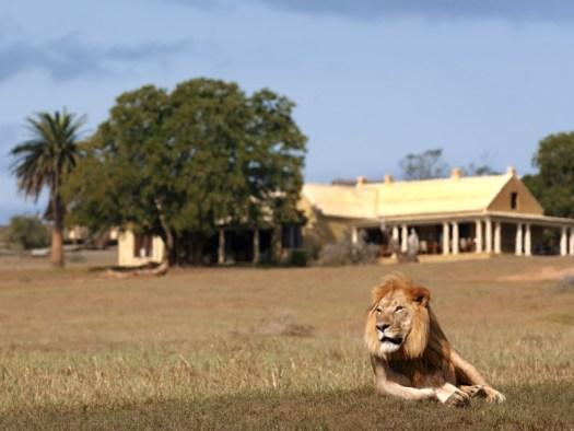 Gorah Elephant Camp Manor House
