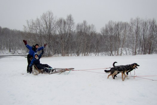 07-Dogsled_HoneyTrek.com