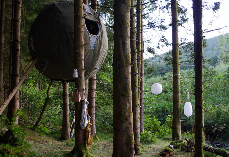 Youu0027ve heard of pods and tree houses but how about a pod in a tree? These gl&ing globes are referred to as u201ctree tentsu201d with the Red Kite Tree Tent ... & Glamping on the Wild Side - Glamping.com