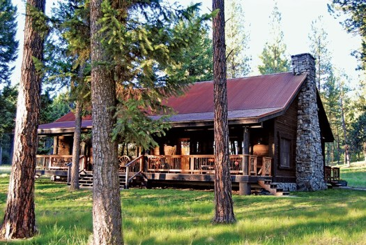 paws up cabin