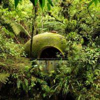"""Cuevañas enclavadas en la selva junto al río Cuichat en """"Tosepan Kali"""", Cuetzalan, Puebla"""