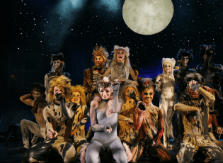 Cats - Andrew Lloyd Webber - Musical - Glarean Magazin