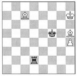 Jean-Marc Loustau: White to play and win (Phénix 2009)
