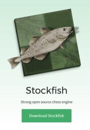 ... dem aktuell weltbesten Schach-Programm Stockfish. Wahrscheinlich generierte die Begegnung eine ganze Reihe von Remisen...