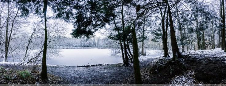Foersterteiche_im_Winter_00007