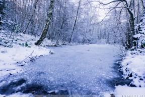 Foersterteiche_im_Winter_00012