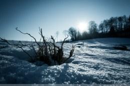 Winter_Impressionen_2017_00005