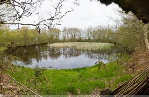 Geocaching, Dänemark, Fanö, Fano, Danmark, Geocachen, Wandern, Vogelkoje, Sonderho, Natur, Landschaft, Fotografie, Urlaub