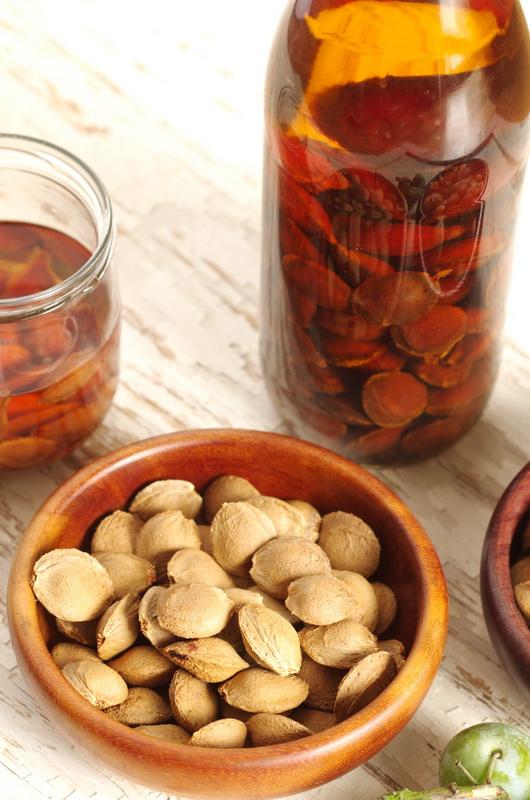 aufgesetzte Aprikosenkerne
