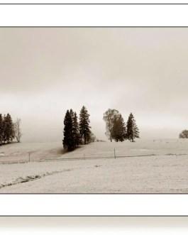 Winterlandschaft, Hopfen am See 1 F4 Sepia, Framed Bilder