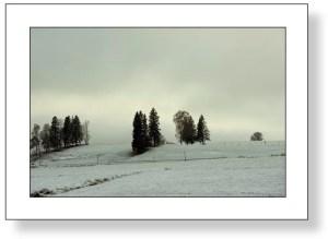 Winterlandschaft, Hopfen am See 1 F4