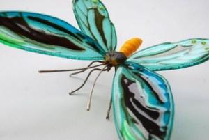 hart_butterfly3-400x268
