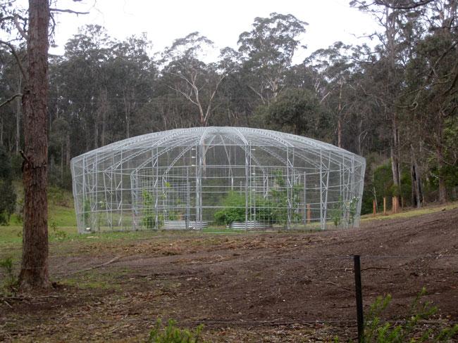 cage-garden