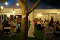 Mager Designs made our night perfect with their lighting. We took the Sylvania Historic Village, dropped a huge tent out front and made it the perfect setting for our wedding. Chris Mager's gifted eye made it unforgettable.