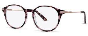 BB6073 Glasses By BASEBOX