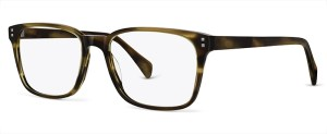 Larch C2 Glasses By ECO CONSCIOUS