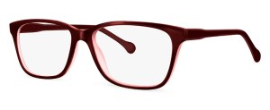 ZP4017 Glasses By ZIPS
