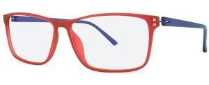 ZP4031 Glasses By ZIPS