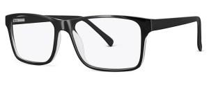 ZP4061 Glasses By ZIPS