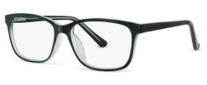 ZP4076 Glasses By