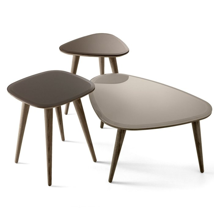 Fifties Glass and Wood Coffee Table by Gallotti & Radice