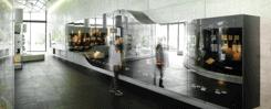Muzeum w Lipsku MIRONA glass