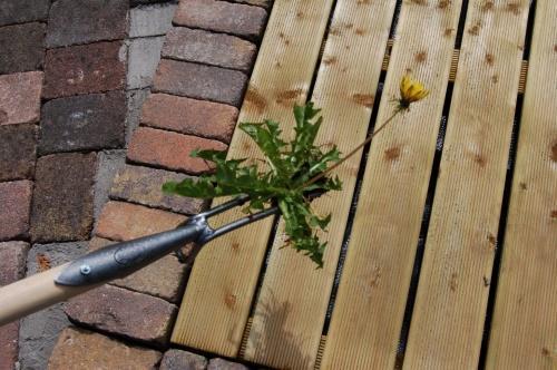 Как пользоваться ручным корнеудалителем, виды инструмента ...
